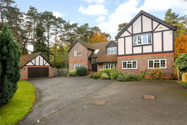 Thumbnail Detached house for sale in Bramblewood Place, Fleet