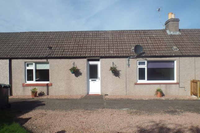Thumbnail Cottage for sale in 3 Ryehill Cottages Craigo, Montrose