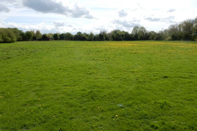 Thumbnail Farm for sale in Carlow Road, Ringstead, Kettering