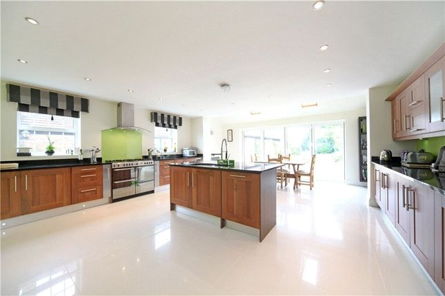 Thumbnail Detached house to rent in Sturt Green, Holyport, Maidenhead