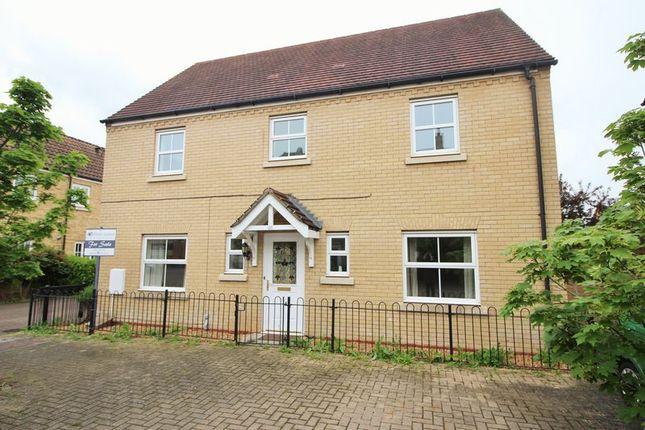 Thumbnail Detached house for sale in Christie Drive, Hinchingbrooke Park, Huntingdon, Cambridgeshire.