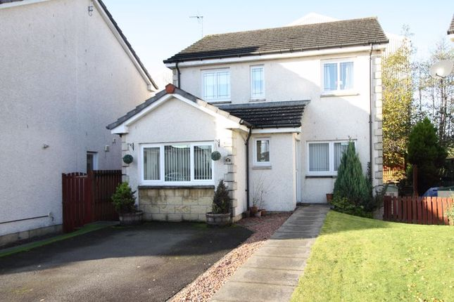 Thumbnail Detached house for sale in Bellevue Park, Alloa
