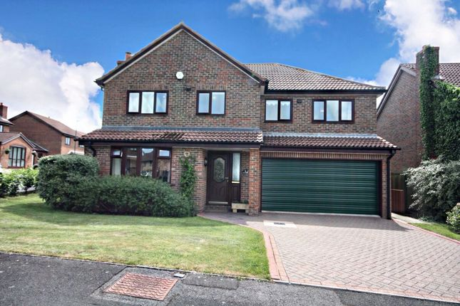 Thumbnail Detached house for sale in Ruff Tail, Guisborough