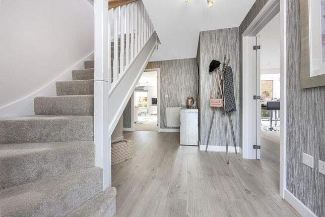 "Thumbnail Detached house for sale in ""Layton"" at Ashford Road, Faversham"