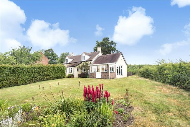 Thumbnail Detached house for sale in Belchalwell, Blandford Forum, Dorset