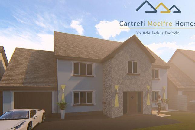 Thumbnail Detached house for sale in Rhydargaeau, Carmarthen