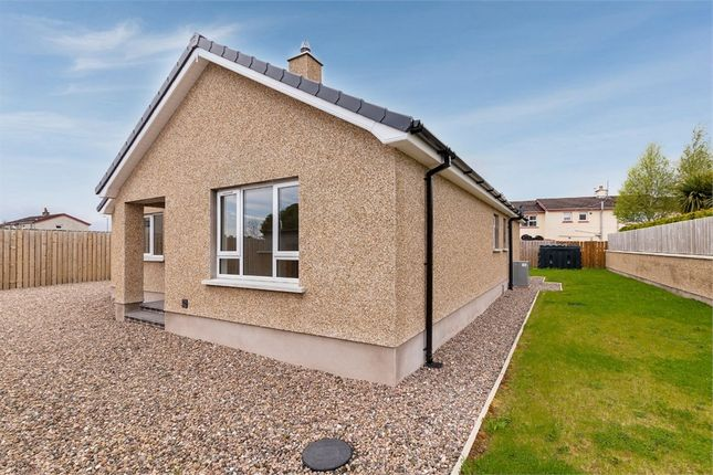 3 bed detached bungalow for sale in Coleraine Road, Garvagh, Coleraine, County Londonderry BT51