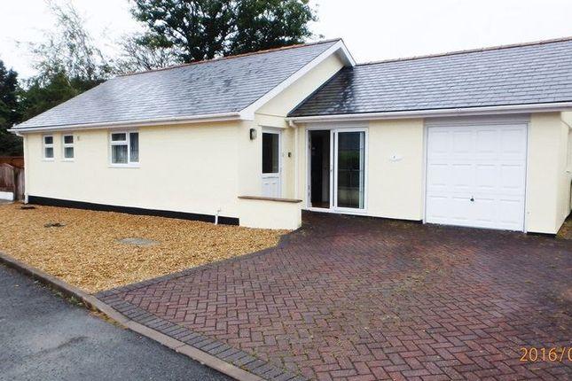 Thumbnail Detached bungalow to rent in Llanbedr