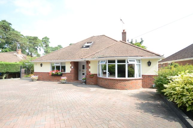 Thumbnail Bungalow to rent in Reading Road South, Church Crookham, Fleet