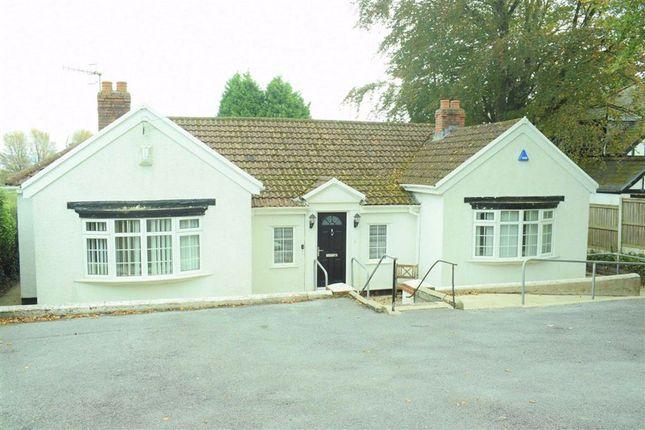 Thumbnail Detached bungalow for sale in Derwen Fawr Road, Derwen Fawr, Sketty