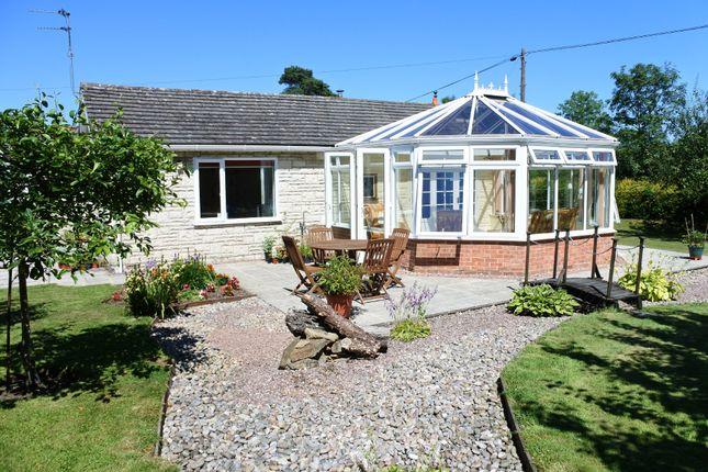 Thumbnail Detached bungalow for sale in Milton On Stour, Gillingham