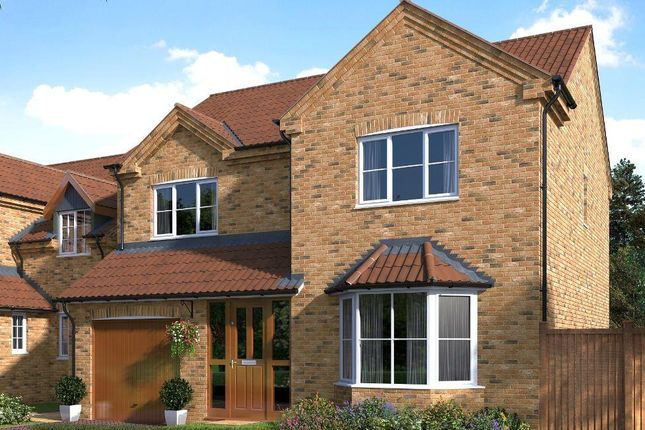 Thumbnail Detached house for sale in Humber View, St Chads, Barton