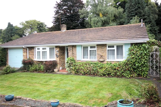 Thumbnail Detached bungalow for sale in Ottershaw, Chertsey, Surrey