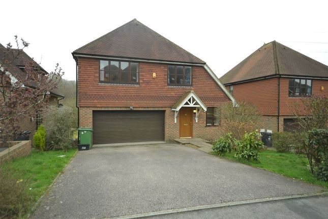 Thumbnail Detached house to rent in Beachy Head View, St Leonards On Sea, East Sussex