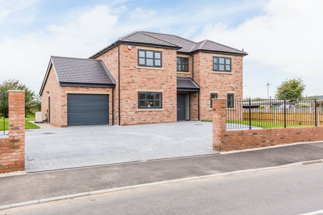 Thumbnail Detached house for sale in Meadow Side, Mattersey Road, Everton, Doncaster