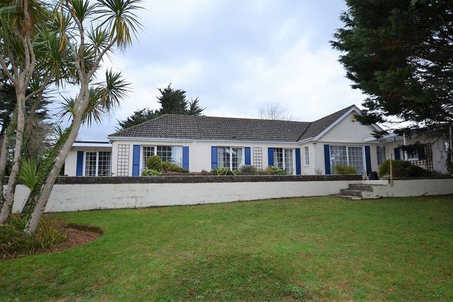 Thumbnail Bungalow for sale in Bascombe Road, Churston Ferrers, Brixham