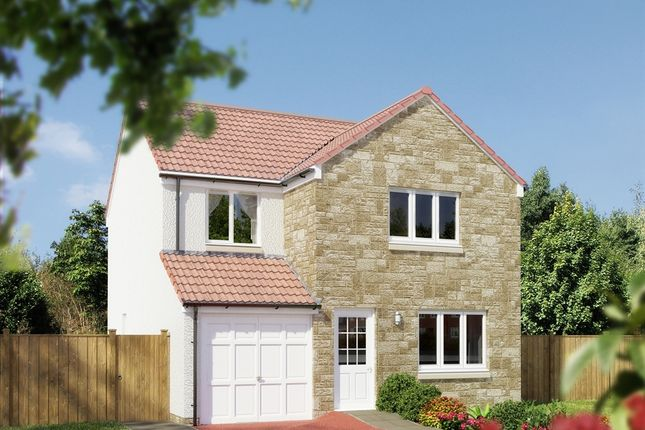 """Thumbnail Detached house for sale in """"The Leith"""" at Whitehouse Gardens, Gorebridge"""