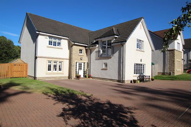 Thumbnail Detached house for sale in Wellshaw View, Hamilton