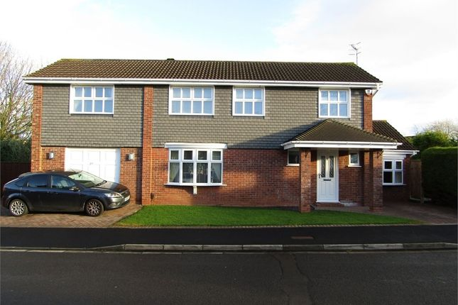Thumbnail Detached house for sale in Smythe Croft, Windways, Bristol