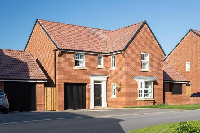 """Thumbnail Detached house for sale in """"Exeter"""" at Westend, Stonehouse"""