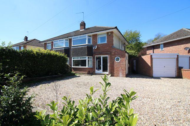 Thumbnail Semi-detached house for sale in Blue Boar Lane, Norwich