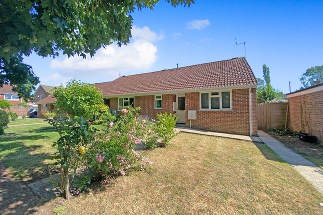1 bed semi-detached bungalow to rent in De Lucy Avenue, Alresford SO24