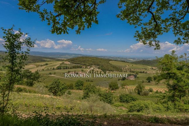 Farm for sale in Montalcino, Tuscany, Italy