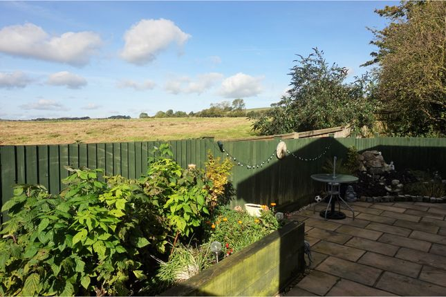 Thumbnail Mobile/park home for sale in Yew Tree Park Homes, Ashford