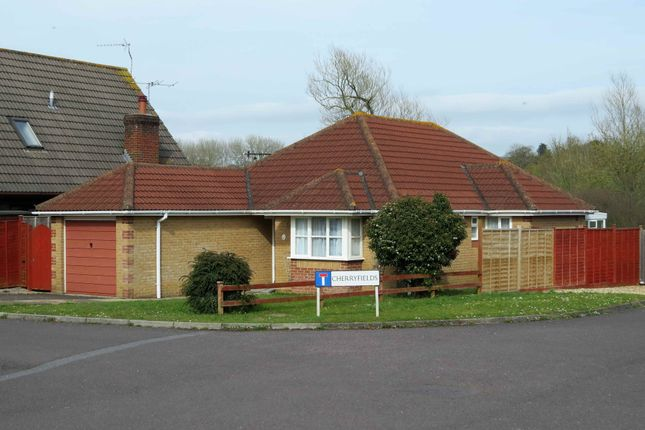 Thumbnail Bungalow to rent in Cherryfields, Gillingham, Dorset