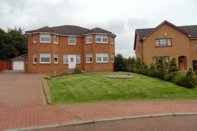 Thumbnail Property for sale in Braid Avenue, Motherwell