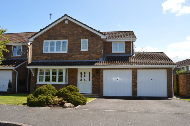 Thumbnail Detached house for sale in Linden Park, Shaftesbury