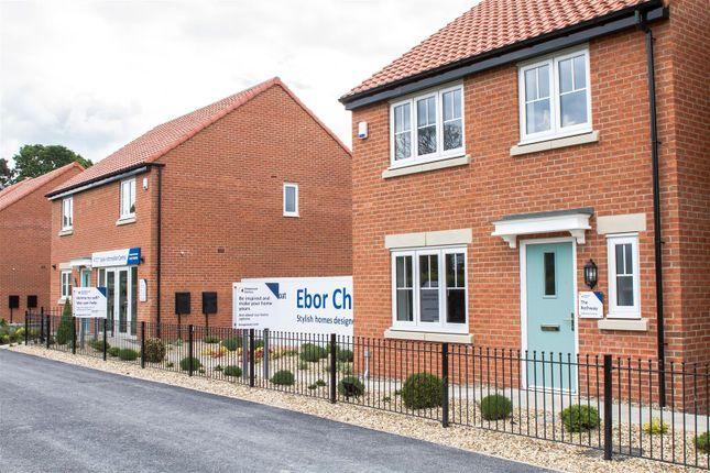 Thumbnail Detached house for sale in Langton Road, Norton, Malton