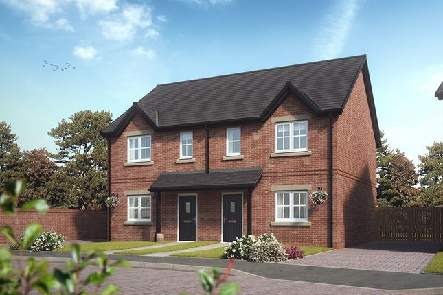 """3 bed semi-detached house for sale in """"Rowan"""" at Stoney Lane, Galgate, Lancaster"""