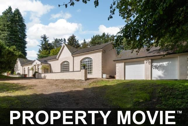Thumbnail Detached house for sale in Lanfine Estate, Newmilns, East Ayrshire