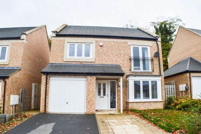 Thumbnail Detached house to rent in Beechwood Drive, Prudhoe