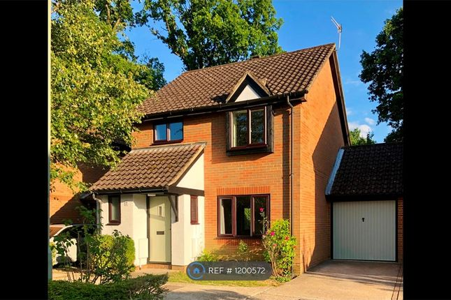 Thumbnail Detached house to rent in Longchamps Close, Horley