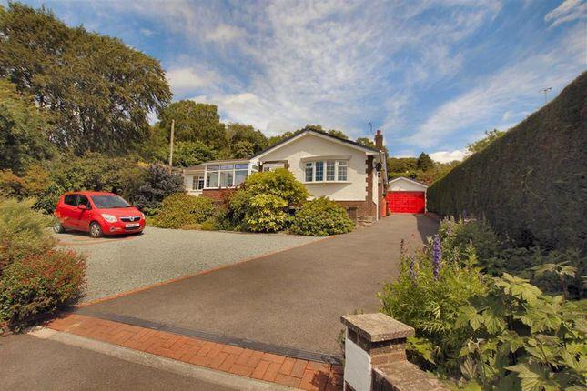Thumbnail Detached bungalow for sale in Cefn Bychan Road, Pantymwyn, Flintshire