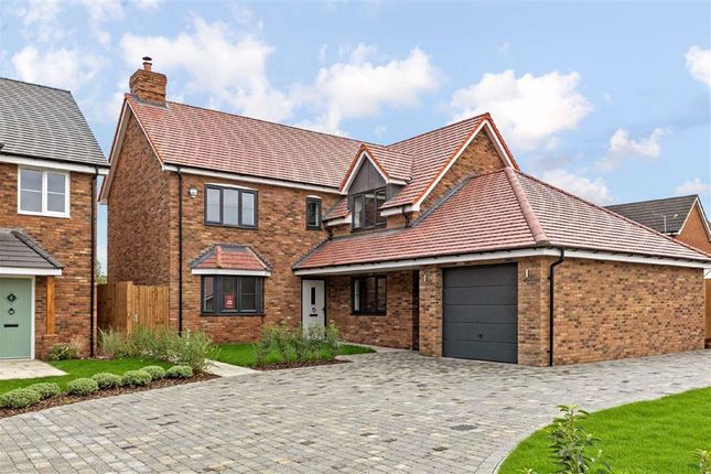 Thumbnail Detached house for sale in Fildyke Road, Meppershall, Bedfordshire