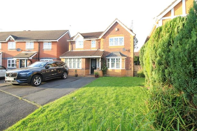 Thumbnail Detached house to rent in Kittiwake Close, Astley, Tyldesley, Manchester