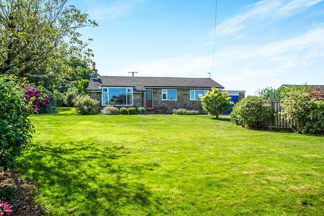 Thumbnail Bungalow for sale in High View, Hedley, Stocksfield