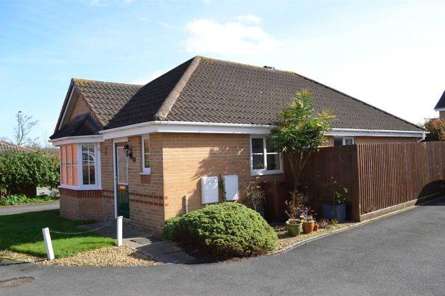 Thumbnail Bungalow to rent in Windsor Close, Cullompton, Devon