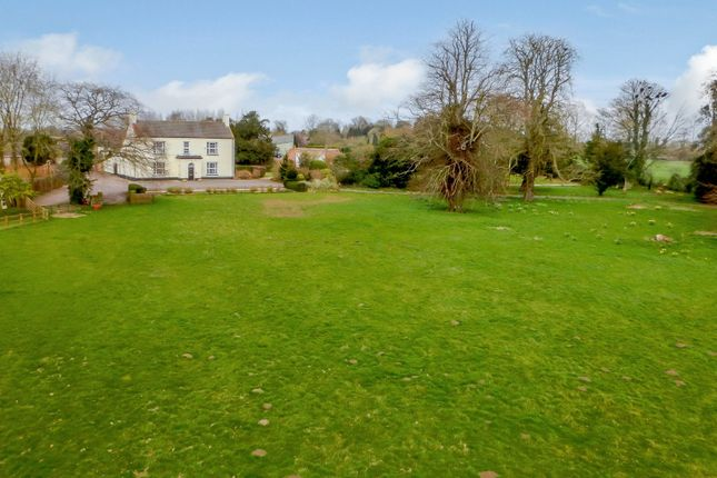 Thumbnail Detached house for sale in Ashill, Thetford