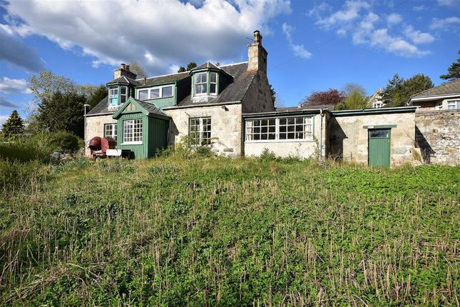 Thumbnail Cottage for sale in Dunstaffanage Brae, Grantown-On-Spey