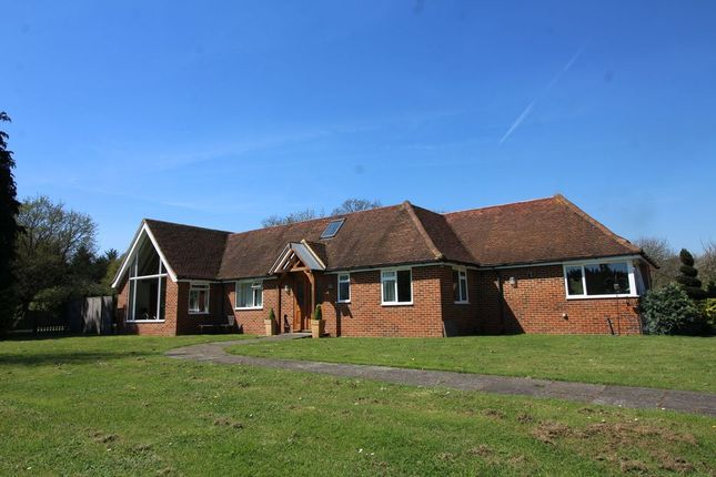 Thumbnail Detached bungalow for sale in Stroude Road, Egham