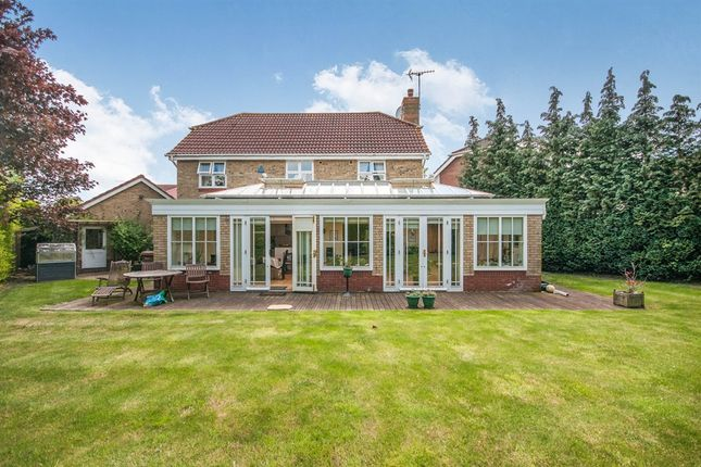 4 bedroom detached house for sale in Apple Way, Great Baddow, Chelmsford