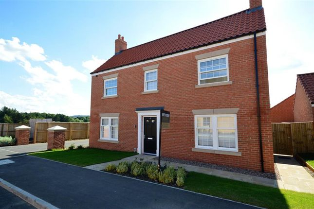 Thumbnail Detached house for sale in Foxglove Way, Scarborough