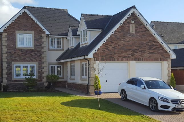 Thumbnail Detached house for sale in Rhosybonwen Road, Cefneithin, Llanelli