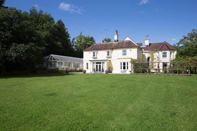 Thumbnail Detached house for sale in Droxford, Hants