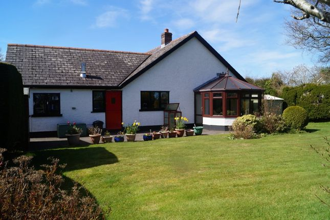 Thumbnail Detached bungalow for sale in Maesymeillion, Llandysul