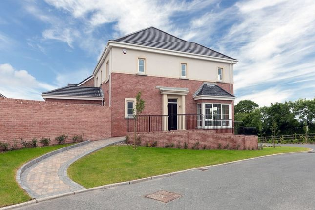 Thumbnail Detached house for sale in Carrowreagh Road, Dundonald, Belfast